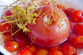 Red tomato in brine — Stock Photo