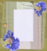 Old blank paper and flowers. grunge vintage background — Stock Photo