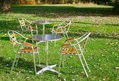Yeşil çimenlerin üzerinde bir parkta iki kafe masaları — Stok fotoğraf