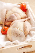 Two pheasants bird, plucked and stuffed in wooden box — Stock Photo