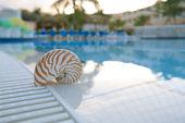 Nautilus shell at resort swimming pool edge — Stock Photo