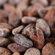 Roasted cocoa beans macro background - Stock Photo