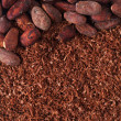 Royalty-Free Stock Photo: Cocoa beans and grated chocolate background