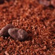 Stock Photo: Cocobeans and grated chocolate background, super macro