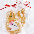 Gingerbread girl cookie gift in clear bag — Stock Photo #27531615