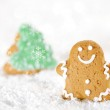 Gingerbread man and christmas tree on a festive Christmas snow — Stock Photo #31425947