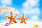 Starfish with ocean , beach and seascape — Stock Photo