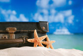 Old retro antique suitcase on beach with starfish, ocean and sky — Stock Photo