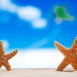 Starfish  with ocean , beach and seascape — Stock Photo #33377819