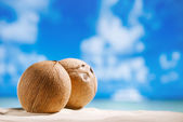 Coconuts with ocean , beach and seascape — Zdjęcie stockowe