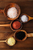 Different type of salt in wooden spoons — Stock Photo