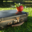 Old black suitcase by the river with red apple — Stock Photo