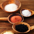 Different type of salt in rustic clay bowls — Stok fotoğraf