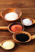 Different type of salt in rustic clay bowls — Stock Photo