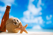 Coconut and starfish shell with sun, ocean , beach and seascape — Stock Photo