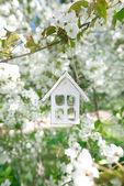 Little wooden house in Spring with blossom cherry flower sakura — Stock Photo