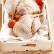 Two pheasants bird, plucked and stuffed in wooden box — Stock Photo #39579811