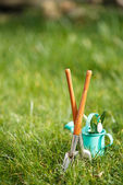 Gardening tools and snowdrops — Stock Photo