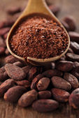 Cocoa powder in spoon — 图库照片