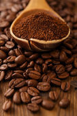 Grated coffee in spoon on coffee  beans — Stock Photo
