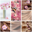 Collage of hair care and hair beauty images - Stock Photo