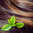 Hair care concept: beautiful shiny hair with highlights and gree — Stock Photo #31495985