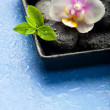 Orchid flower, green leaves and spa stones on wet blue backgroun — Stock Photo #31496485
