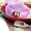 Spa concept with bath salt and orchids, closeup shot — Stock Photo #42217377