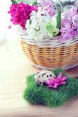 ヒヤシンスの花とウズラの卵イースター設定 — ストック写真