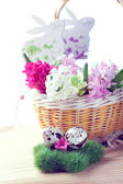Easter setting with quail eggs and hyacinth flowers — Foto Stock