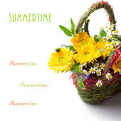 Basket of colorful summer flowers, with space for text — Foto de Stock