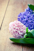 Beautiful hyacinth flowers on old wooden background, border comp — Stock Photo