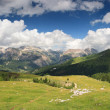 Nature scenery - Dolomites — Stock Photo