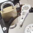 Secure hard disk drive — Stock Photo