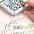 Stock Photo: Czech tax form