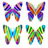 Many-colored butterflies — Stock Photo