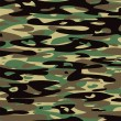 Vector camouflage pattern — Stock Vector #18647083