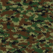 Royalty-Free Stock : Vector  camouflage pattern