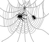 Vector spider, web and a caught fly — Stock Vector