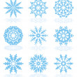 Vector collection of snowflake icons   — Stockvektor