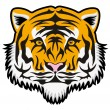 Vector tiger face — Stock Vector