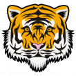 Vector tiger face — Stock Vector #36657181