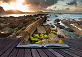 Creative concept image of seascape in pages of book — Stock Photo