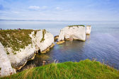 Old Harry Rocks Jurassic Coast UNESCO Dorset England — Stock Photo