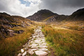 View along footpath in mountains towards Glyder Fawr Snowdonia N — Stock Photo