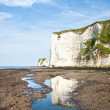Stock Photo: Old Harry Rocks Jurassic Coast UNESCO Dorset England at low tide