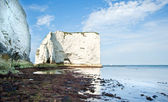 Old Harry Rocks Jurassic Coast UNESCO Dorset England at low tide — Stock Photo