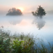 Beautiful Autumn Fall landscape over foggy misty lake wih glowin — Stock Photo #15326397