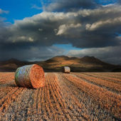 Landscape of hay bales in front of mountain range with dramatic — Stock Photo