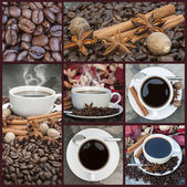 Collage of coffee and caffeine related images — Stock Photo